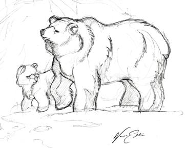 Sketch - Bears